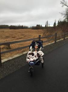 blaise-stroller