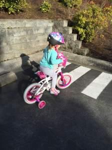 Biker Laine