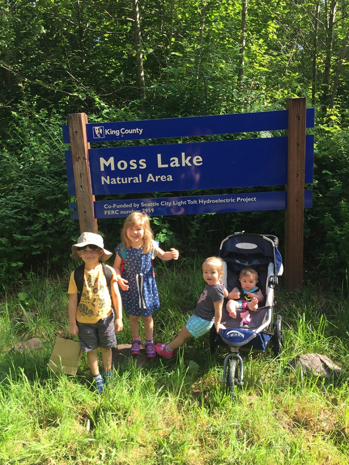 12-jun5mosslakehike