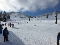 skiing2017-31