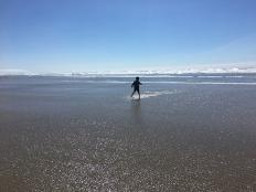 orcaaug2017-75