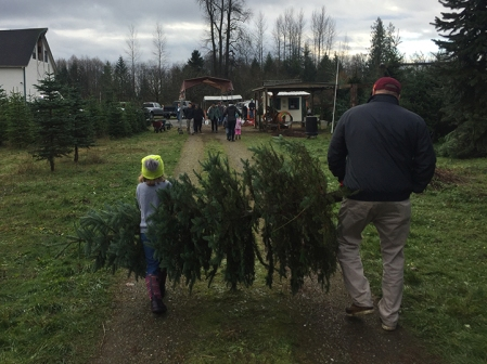 Laine and Papa carrying the tree.