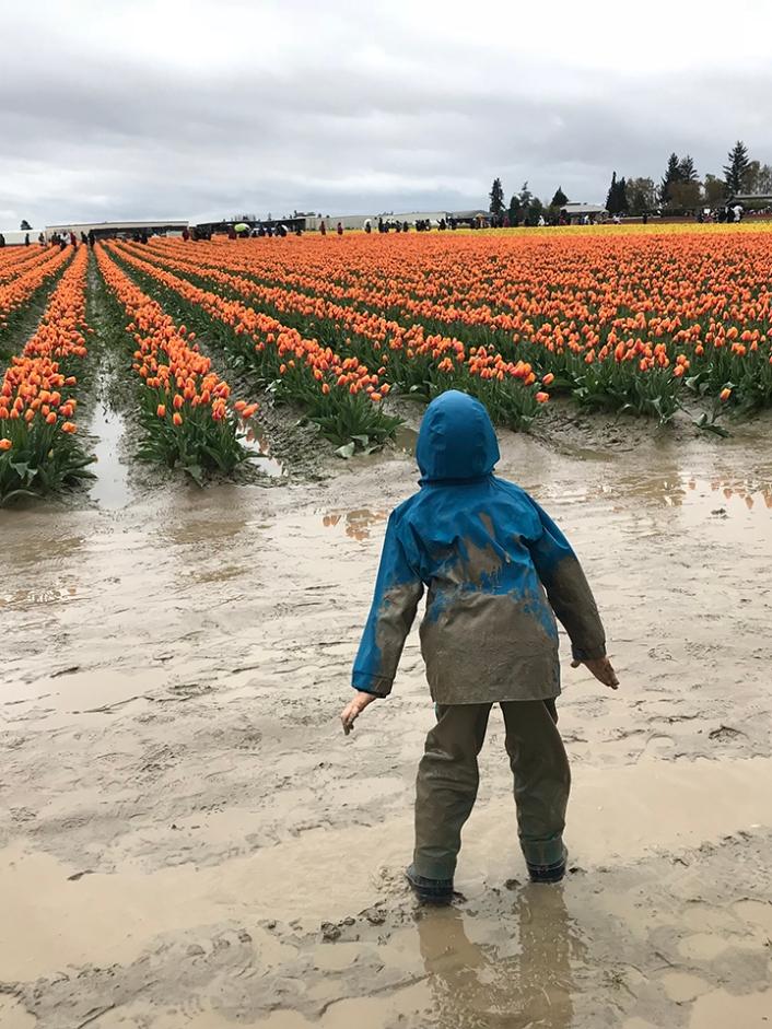 tulips2018-31