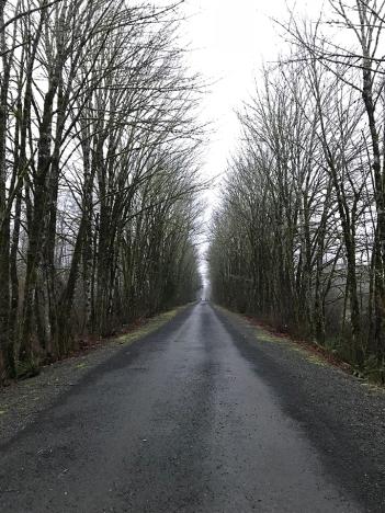 trail-feb