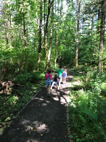 swamp-trail-070618-11