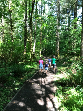 swamp-trail-070618-12