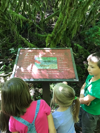 swamp-trail-070618-22