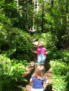 swamp-trail-070618-37