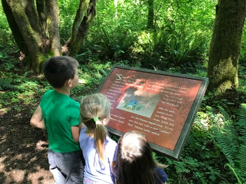 swamp-trail-070618-43