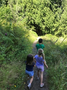 swamp-trail-070618-44