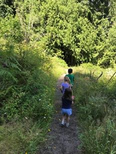 swamp-trail-070618-45