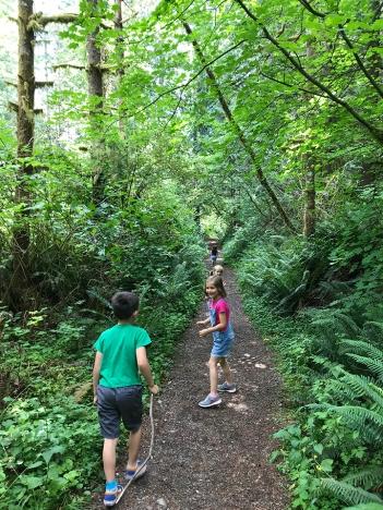 swamp-trail-070618-55