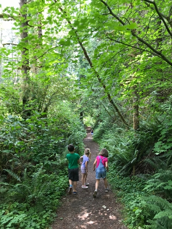 swamp-trail-070618-56